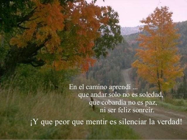 En el camino aprendí ... que andar solo no es soledad, que cobardía no es paz, ni ser feliz sonreír. ¡Y que peor que menti...