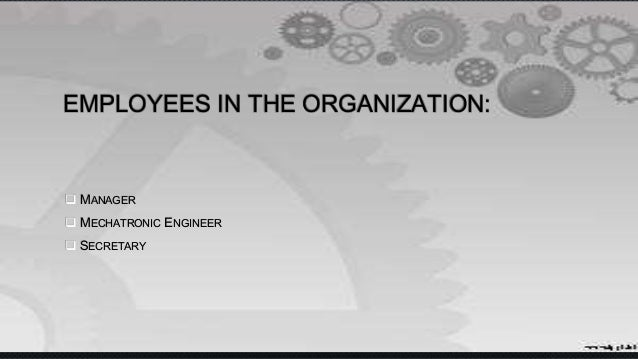EMPLOYEES IN THE ORGANIZATION:  MANAGER  MECHATRONIC ENGINEER  SECRETARY