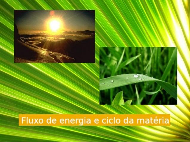  O fluxo de energia é unidirecional.  A transferência de matéria nos ecossistemas é cíclica. CONCLUSÃO