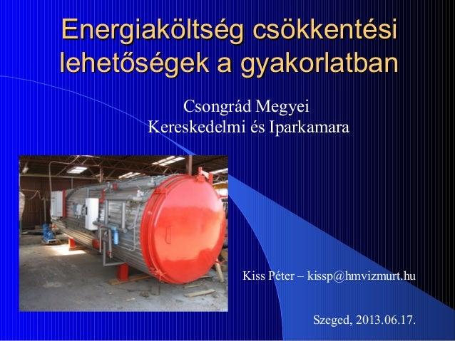 Energiaköltség csökkentésiEnergiaköltség csökkentésilehetőségek a gyakorlatbanlehetőségek a gyakorlatbanCsongrád MegyeiKer...