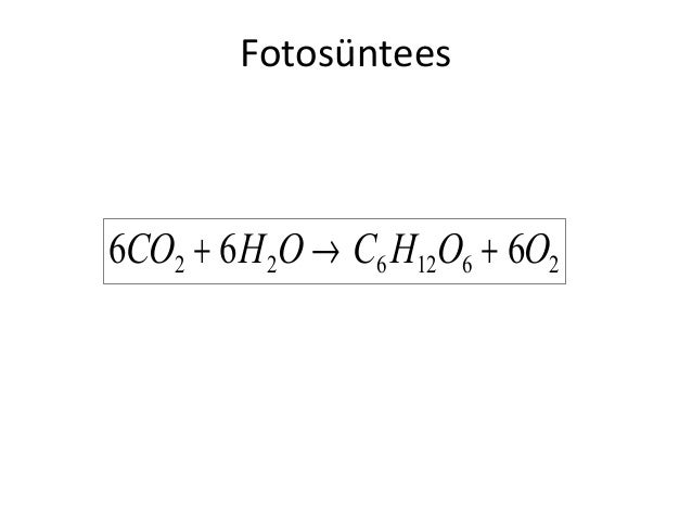 Fotosüntees  6CO2 + 6 H 2O → C6 H12O6 + 6O2