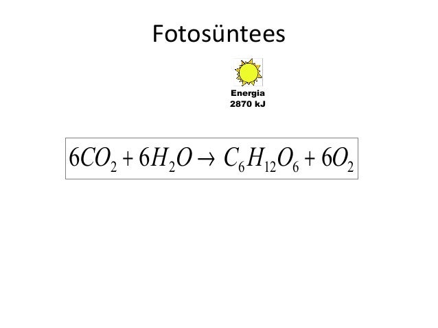 Fotosüntees Energia 2870 kJ  6CO2 + 6 H 2O → C6 H12O6 + 6O2