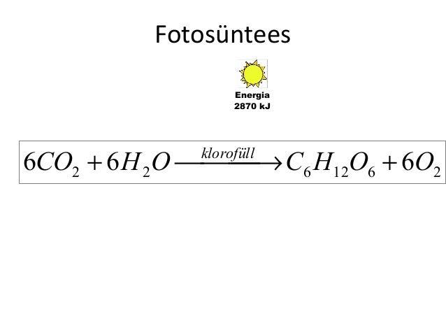 Fotosüntees Energia 2870 kJ  6CO2 + 6 H 2O  → C6 H12O6 + 6O2 klorofüll