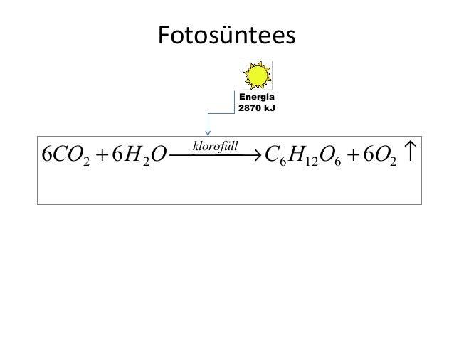 Fotosüntees Energia 2870 kJ  6CO2 + 6 H 2O  → C6 H12O6 + 6O2 ↑ klorofüll