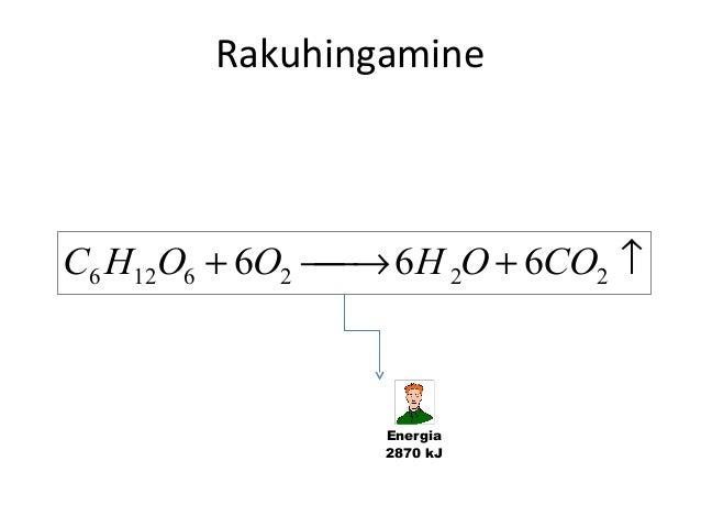 Rakuhingamine  C6 H12O6 + 6O2  6 H 2O + 6CO2 ↑ →  Energia 2870 kJ