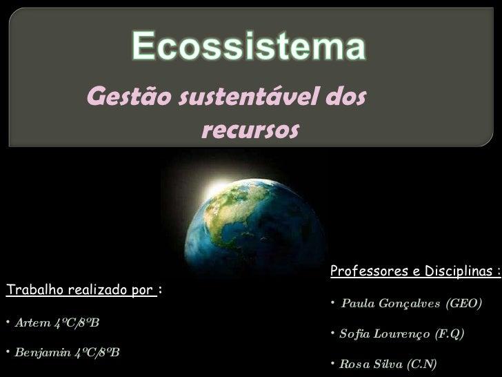 Gestão sustentável dos  recursos <ul><li>Trabalho realizado por  : </li></ul><ul><li>Artem 4ºC/8ºB </li></ul><ul><li>Benja...