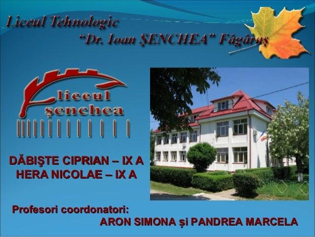 DĂBIŞTE CIPRIAN – IX A HERA NICOLAE – IX A Profesori coordonatori: ARON SIMONA și PANDREA MARCELA