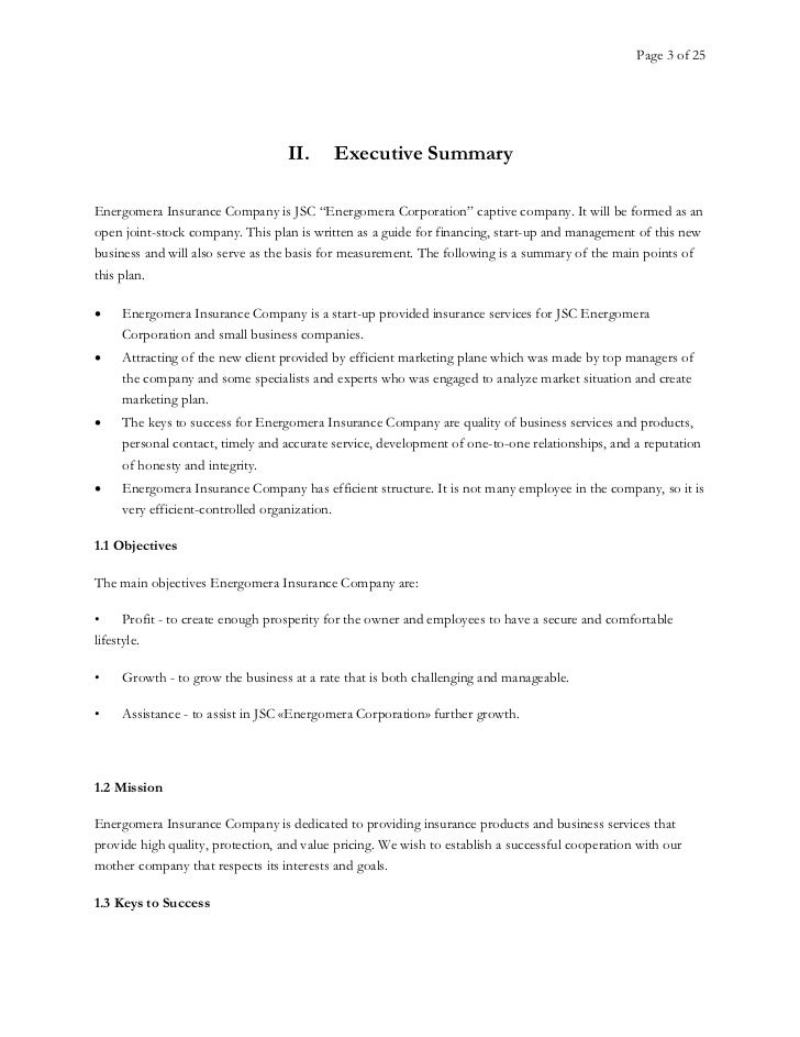 A Sample Insurance Agency Business Plan Template