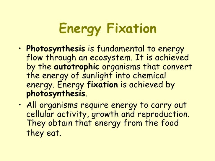 Energy Fixation <ul><li>Photosynthesis  is fundamental to energy flow through an ecosystem. It is achieved by the  autotro...