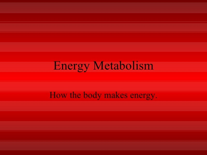 Energy Metabolism How the body makes energy.