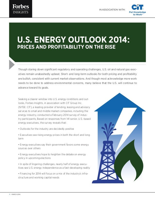 1 | MARCH 2014 Though staring down significant regulatory and operating challenges, U.S. oil and natural gas exec- utives ...