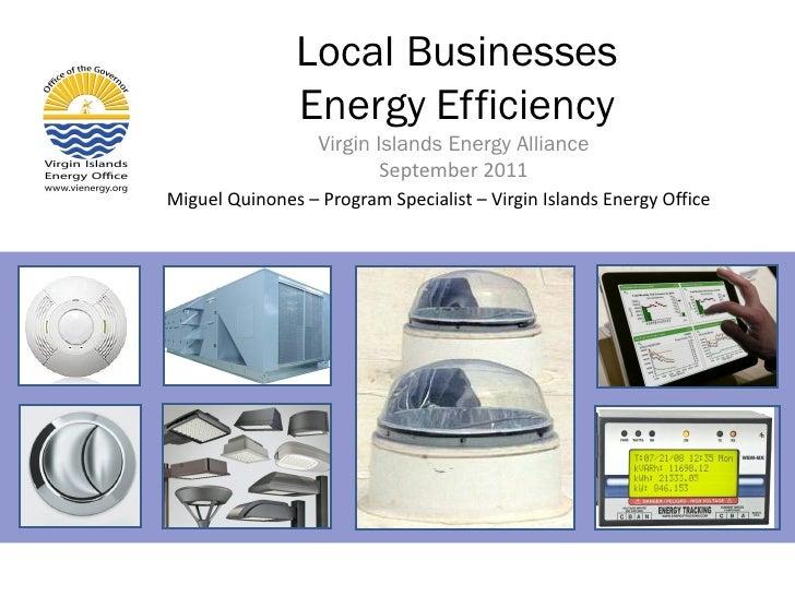 Local Businesses               Energy Efficiency                  Virgin Islands Energy Alliance                          ...