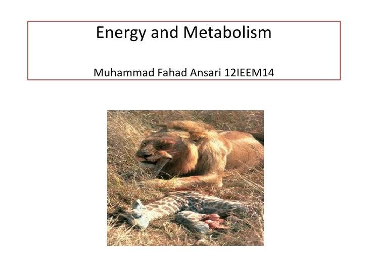 Energy and MetabolismMuhammad Fahad Ansari 12IEEM14
