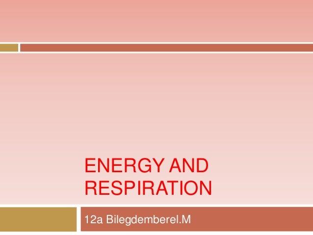 ENERGY AND RESPIRATION 12a Bilegdemberel.M