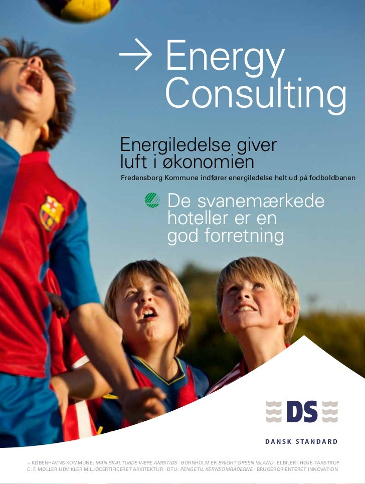 Energy                                                                 Consulting                                  Energil...