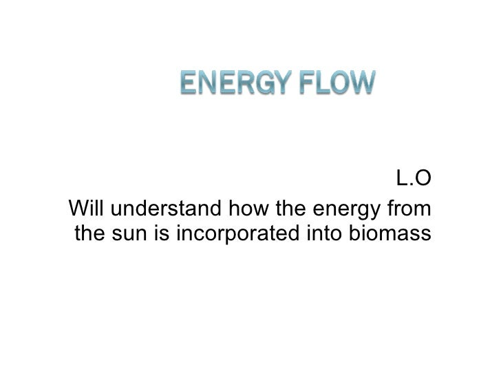 L.O Will understand how the energy from the sun is incorporated into biomass