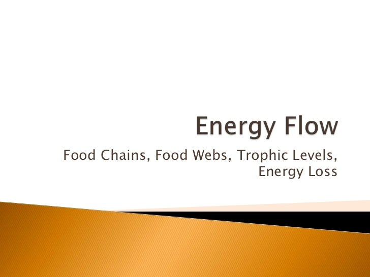 Food Chains, Food Webs, Trophic Levels,                           Energy Loss