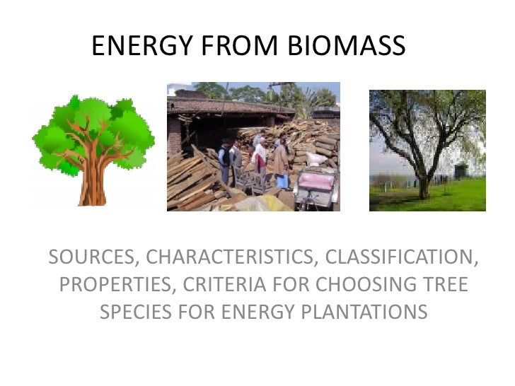 ENERGY FROM BIOMASSSOURCES, CHARACTERISTICS, CLASSIFICATION, PROPERTIES, CRITERIA FOR CHOOSING TREE    SPECIES FOR ENERGY ...