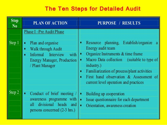 The Ten Steps for Detailed Audit Step No  PLAN OF ACTION  PURPOSE / RESULTS  Phase I –Pre Audit Phase Step 1  • Resource p...