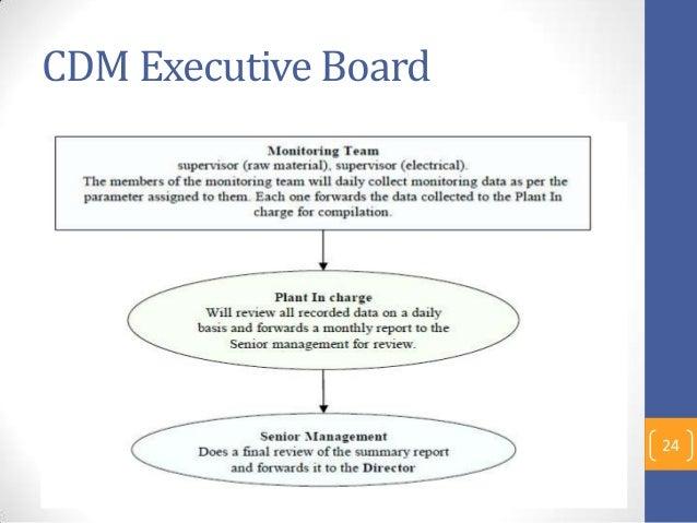 CDM Executive Board 24