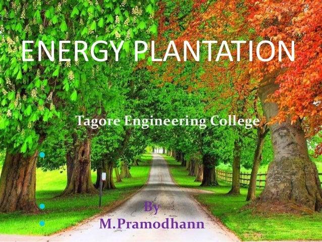 ENERGY PLANTATION Tagore Engineering College      By M.Pramodhann