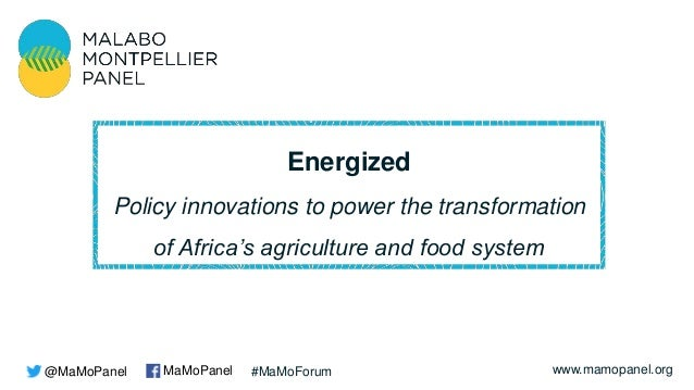 www.mamopanel.org Energized Policy innovations to power the transformation of Africa's agriculture and food system @MaMoPa...