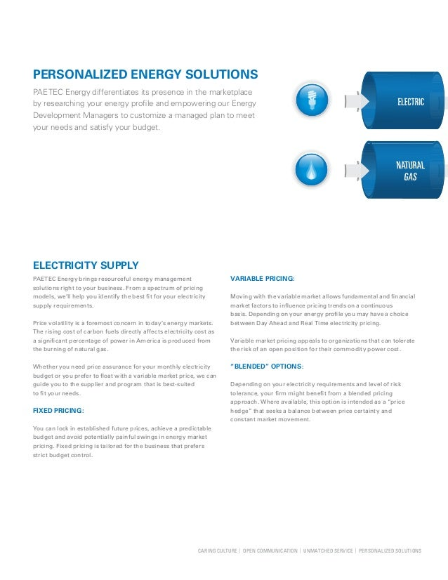 Energy Solutions from PAETEC Slide 3