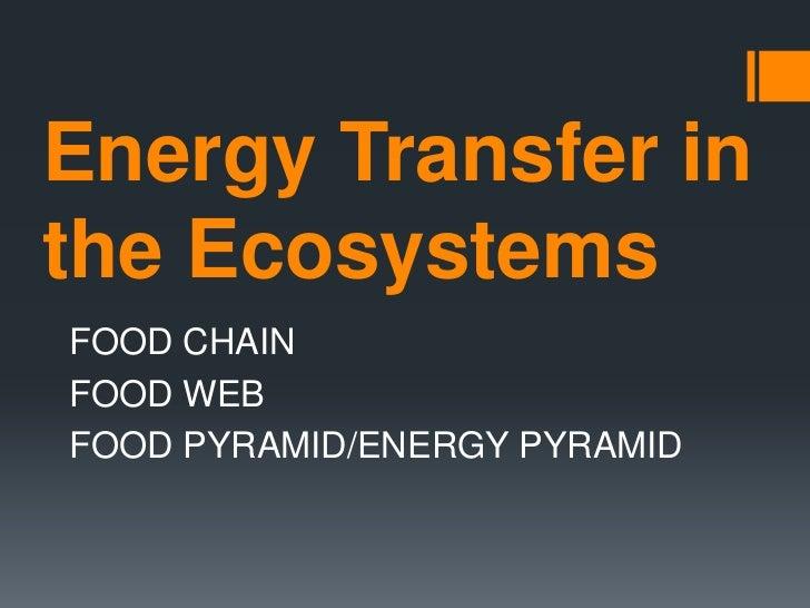 Energy Transfer inthe EcosystemsFOOD CHAINFOOD WEBFOOD PYRAMID/ENERGY PYRAMID