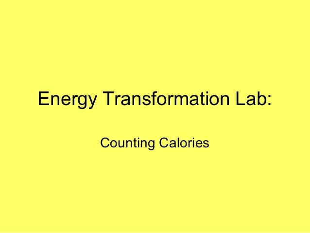 Energy Transformation Lab: Counting Calories