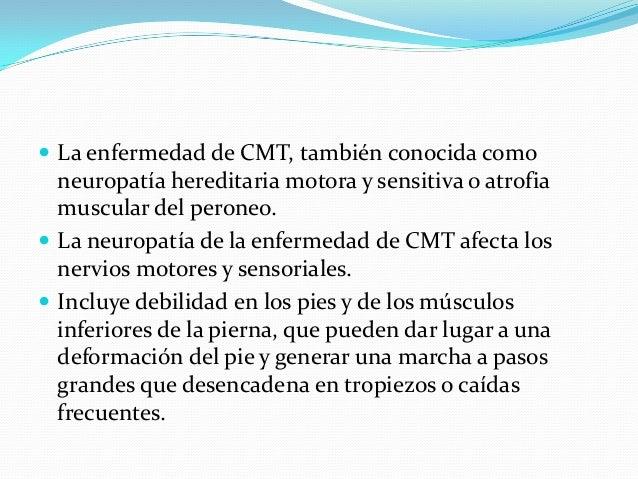  La enfermedad de CMT, también conocida como neuropatía hereditaria motora y sensitiva o atrofia muscular del peroneo.  ...