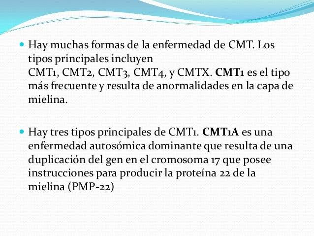  Hay muchas formas de la enfermedad de CMT. Los tipos principales incluyen CMT1, CMT2, CMT3, CMT4, y CMTX. CMT1 es el tip...