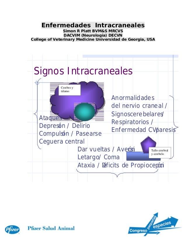Enfermedades Intracraneales               Simon R Platt BVM&S MRCVS                DACVIM (Neurología) DECVNCollege of Vet...