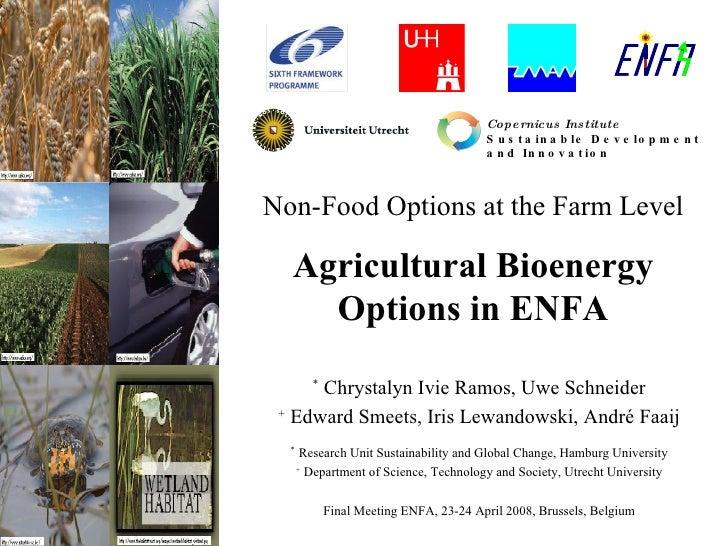 Non-Food Options at the Farm Level Agricultural Bioenergy Options in ENFA *  Chrystalyn Ivie Ramos, Uwe Schneider +  Edwar...