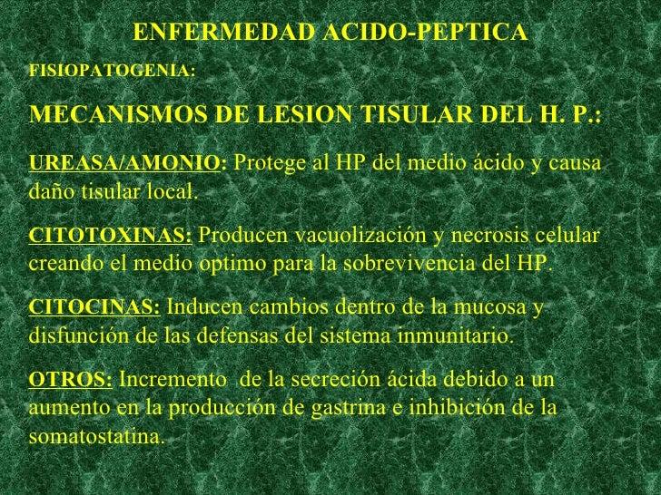 ENFERMEDAD ACIDO-PEPTICA FISIOPATOGENIA: MECANISMOS DE LESION TISULAR DEL H. P.: UREASA/AMONIO :  Protege al HP del medio ...