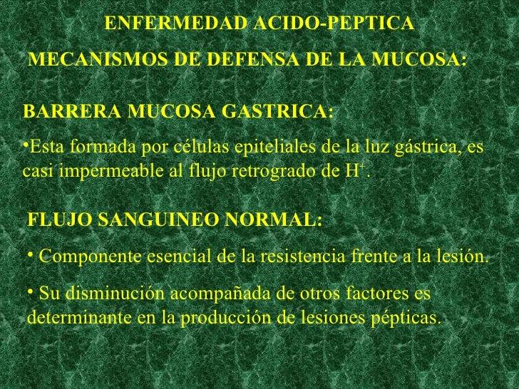 ENFERMEDAD ACIDO-PEPTICA MECANISMOS DE DEFENSA DE LA MUCOSA: BARRERA MUCOSA GASTRICA: <ul><li>Esta formada por células epi...