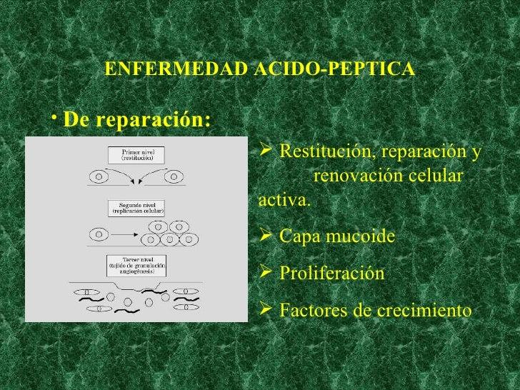 ENFERMEDAD ACIDO-PEPTICA <ul><li>De reparación: </li></ul><ul><li>Restitución, reparación y  renovación celular activa. </...