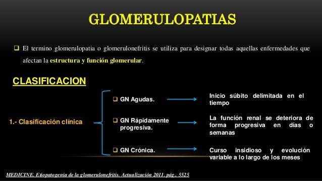 GLOMERULOPATIAS  El termino glomerulopatia o glomerulonefritis se utiliza para designar todas aquellas enfermedades que a...