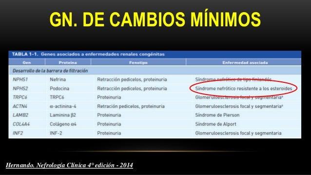 Permeabilidad glomerular aumentada Hipovolemia IRA Malnutrición Normovolemia/hipervolemia PROTEINURIA Albuminuria Hipoalbu...