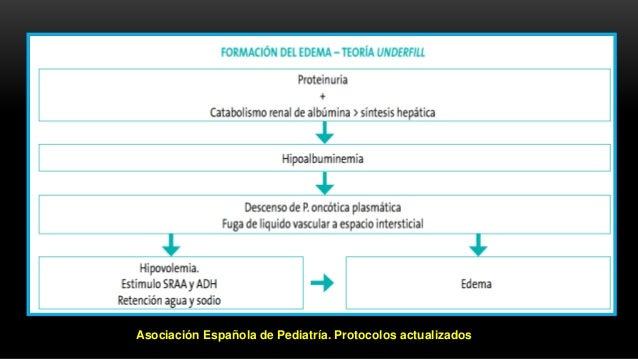 Asociación Española de Pediatría. Protocolos actualizados