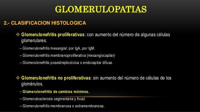  Glomerulonefritis proliferativas: con aumento del número de algunas células glomerulares. – Glomerulonefritis mesangial:...