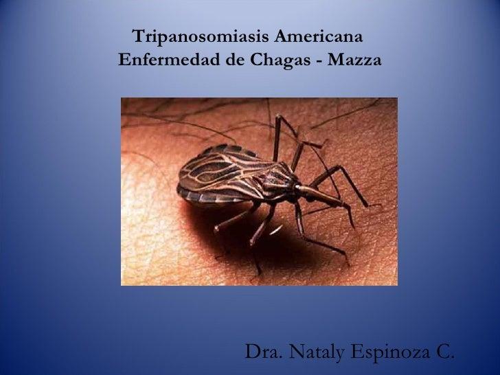 Tripanosomiasis Americana  Enfermedad de Chagas - Mazza Dra. Nataly Espinoza C.