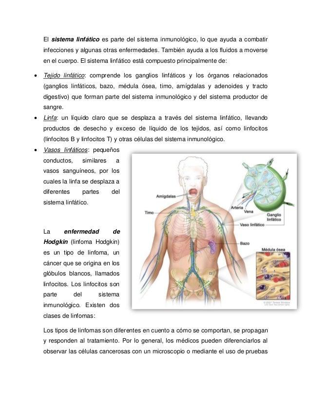 El sistema linfático es parte del sistema inmunológico, lo que ayuda a combatir infecciones y algunas otras enfermedades. ...