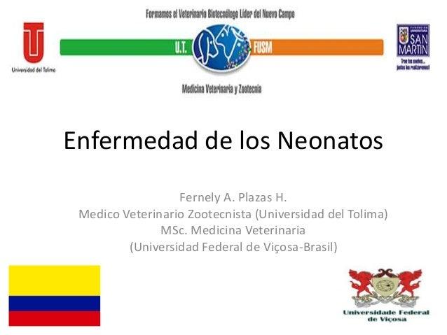 Enfermedad de los Neonatos Fernely A. Plazas H. Medico Veterinario Zootecnista (Universidad del Tolima) MSc. Medicina Vete...