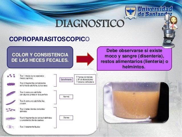 Диагностика+и El tratamiento de los parásitos