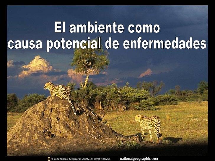 El ambiente como  causa potencial de enfermedades