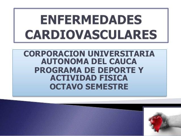 CORPORACION UNIVERSITARIA   AUTONOMA DEL CAUCA  PROGRAMA DE DEPORTE Y     ACTIVIDAD FISICA     OCTAVO SEMESTRE