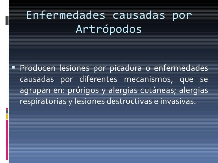 Enfermedades causadas por Artrópodos <ul><li>Producen lesiones por picadura o enfermedades causadas por diferentes mecanis...