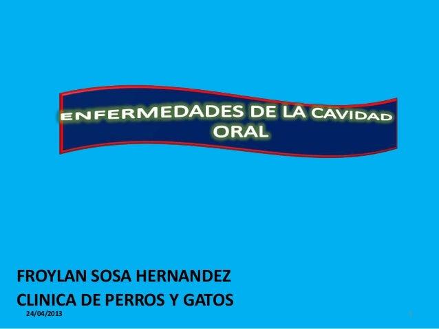 FROYLAN SOSA HERNANDEZCLINICA DE PERROS Y GATOS 24/04/2013                 1