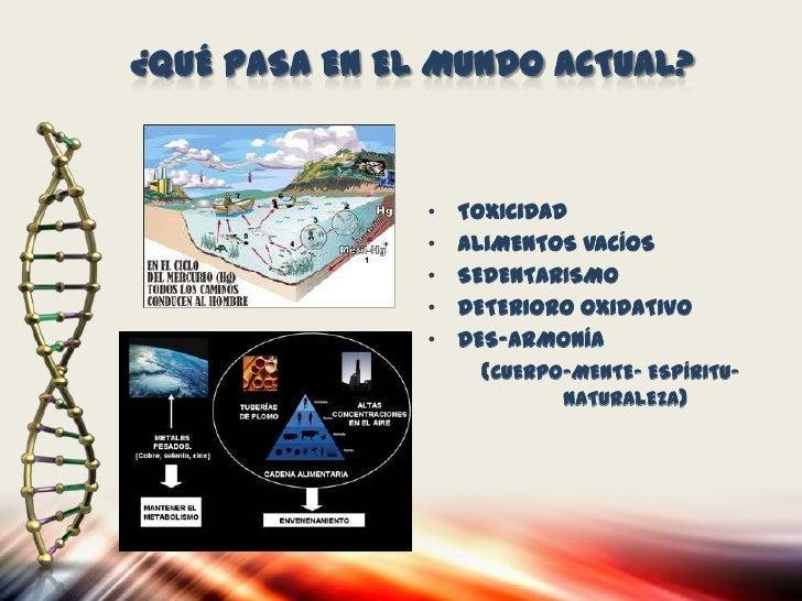 ANTIOXIDANTES PODEROSOS          EXTRACTO DE SEMILLA DE UVA ROJA Y                    BIOFLAVONOIDES                    AC...