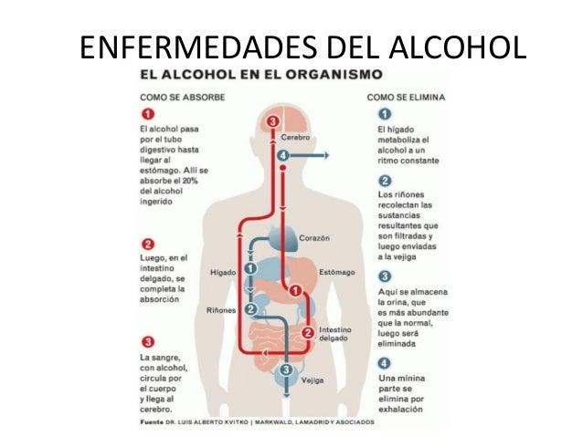 ENFERMEDADES DEL ALCOHOL